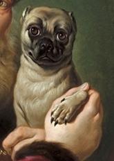 Guida Artistica Junior – Gli Animali nell'arte